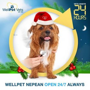 WellPet Vets Christmas Holiday Consultation Hours